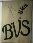 BVS.png